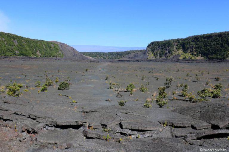 Big Island 530- Kilauea Iki Trail