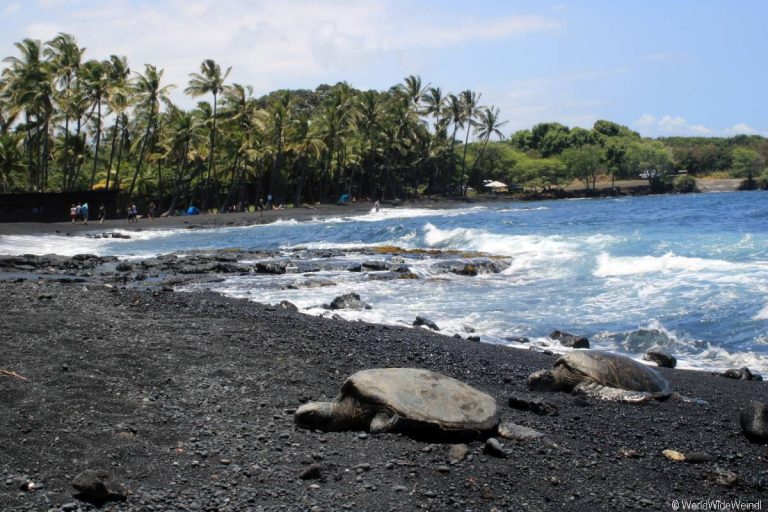 Big Island 555-Punalu'U Black Sand Beach