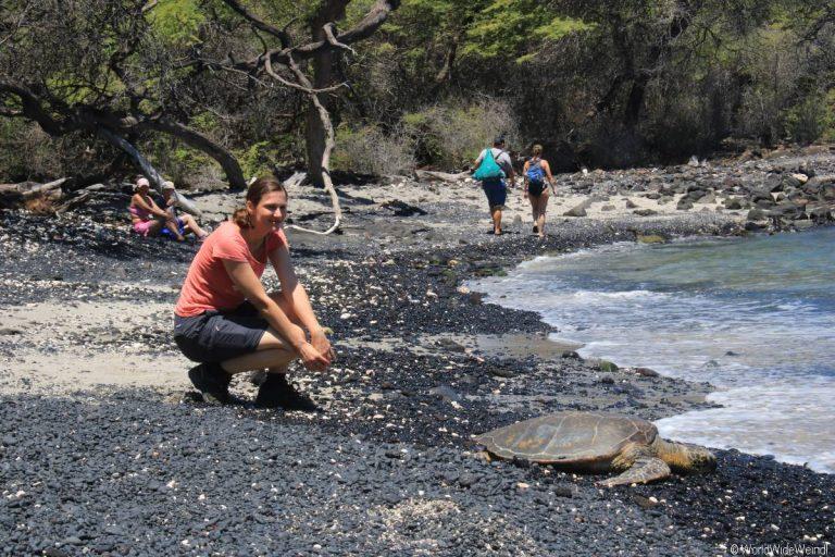 Big Island 615- Kiholo Bay