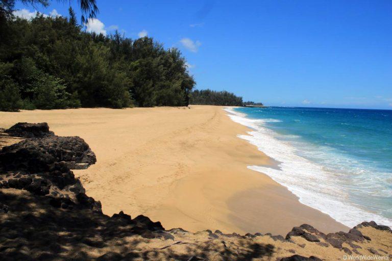 Kauai 1255- neben Lumahai Beach