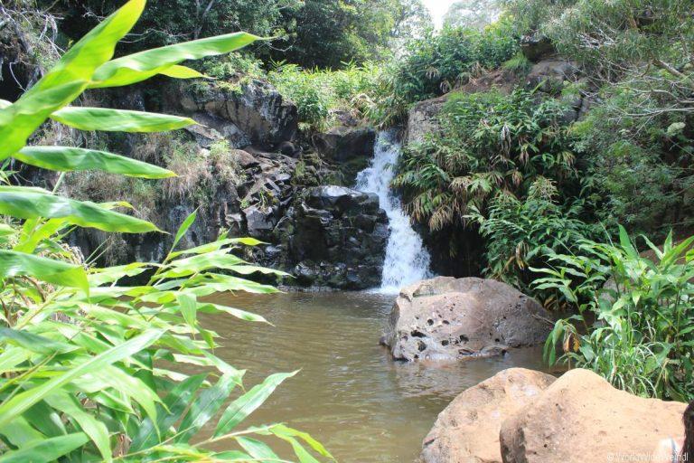 Kauai 1705- Waimea Canyon