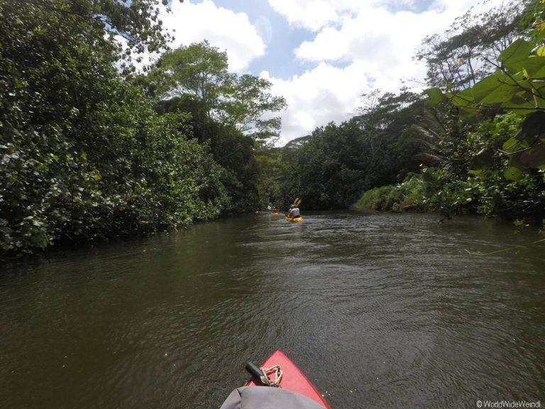 Kauai 3265- Wailua Kayak Tour