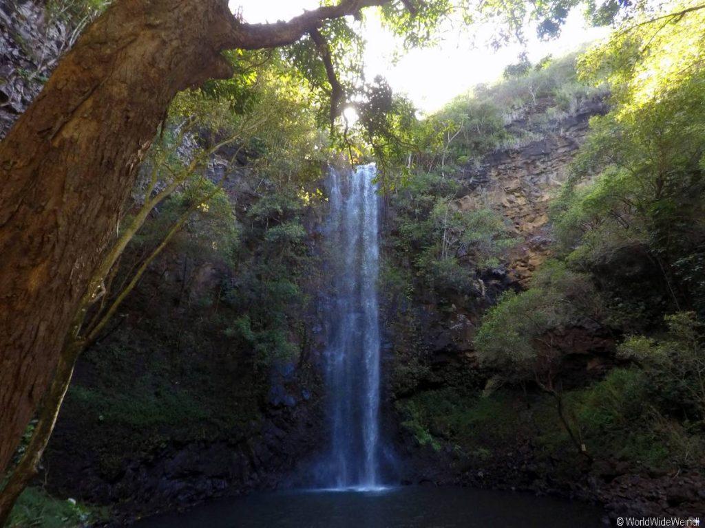 Kauai 265- Wailua Kayak Tour