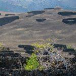 Lanzarote 494, Nationalpark Timanfaya, Wanderung zur Caldera Temensana