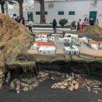 Lanzarote 648, Teguise