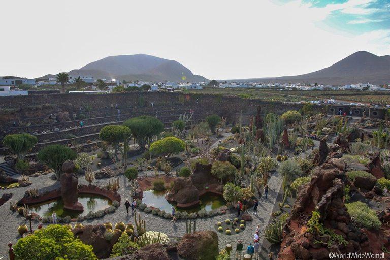 Lanzarote 959, Jardin de Cactus