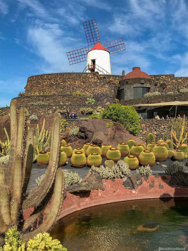 Lanzarote 983, Jardin de Cactus