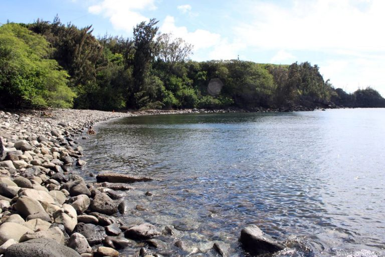 Maui 115- Honolua Bay 1