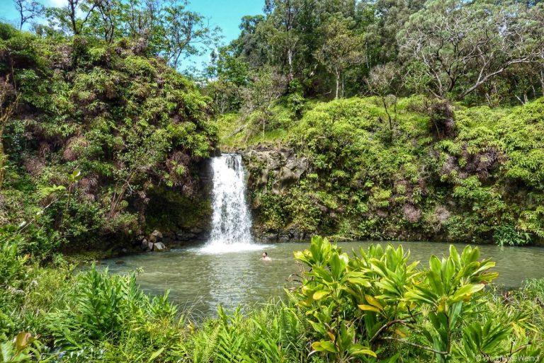 Maui 345- Road To Hana, Pua'a Kaa State Wayside Park