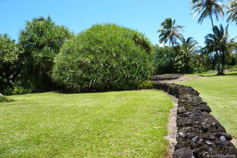 Maui 375, Road To Hana, Kahanu Garden