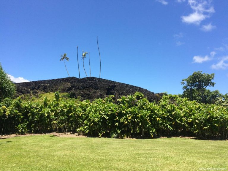 Maui 385, Road To Hana, Kahanu Garden