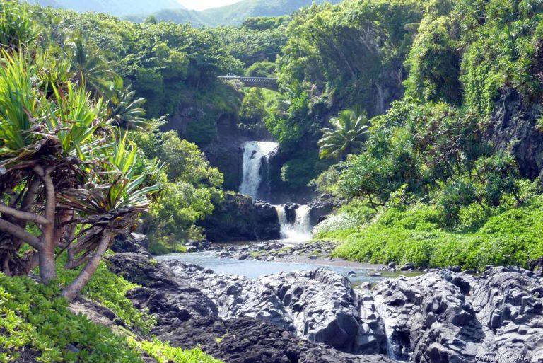 Maui 475, Road To Hana, Kipahulu, Haleakala National Park