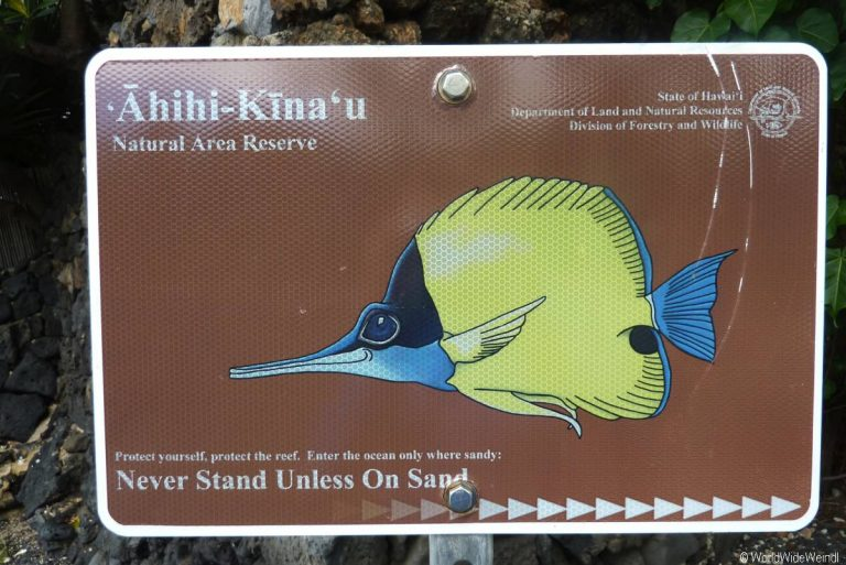 Maui 583- ahihi-kian'u reserve