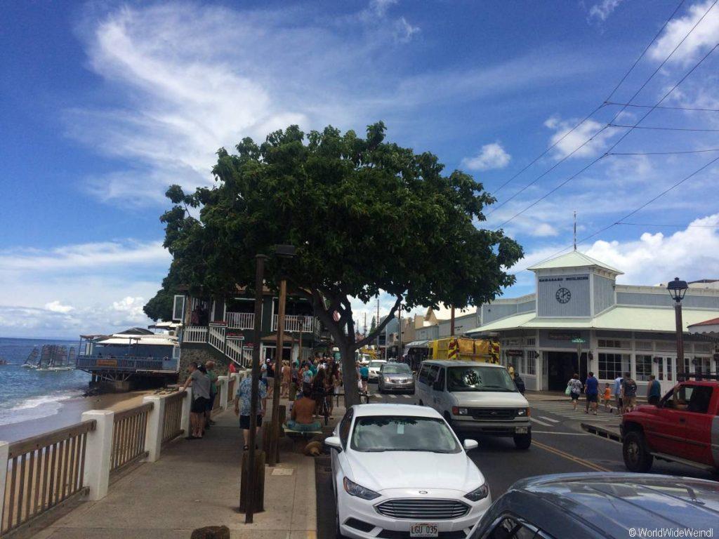 Maui 70- Lahaina 2