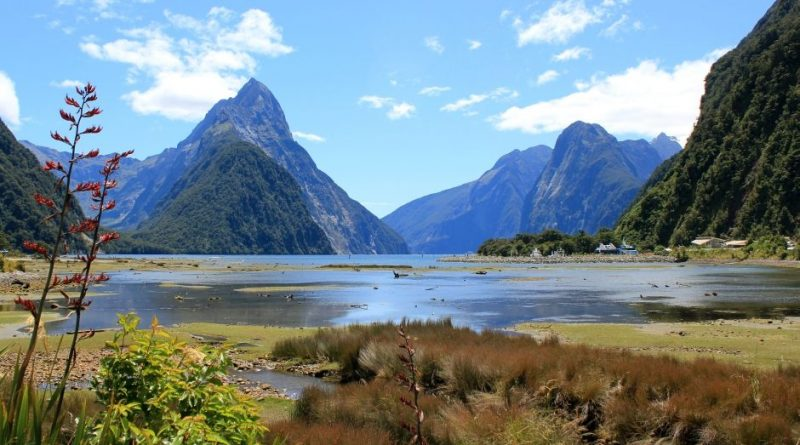 Neuseeland Südinsel, Milford Sound
