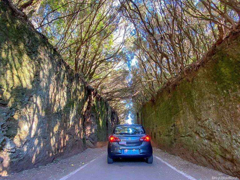 """Lehmwände """"Camino viejo al Pico del Inglés"""""""