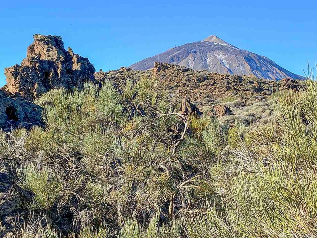 Spanien, Teneriffa_210_Nationalpark Pico del Teide- Besucherstation