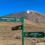 Spanien, Teneriffa_220_Nationalpark Pico del Teide