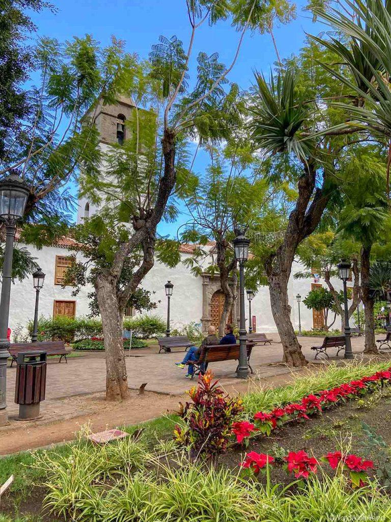 Spanien, Teneriffa_321_Icod de los Vinos