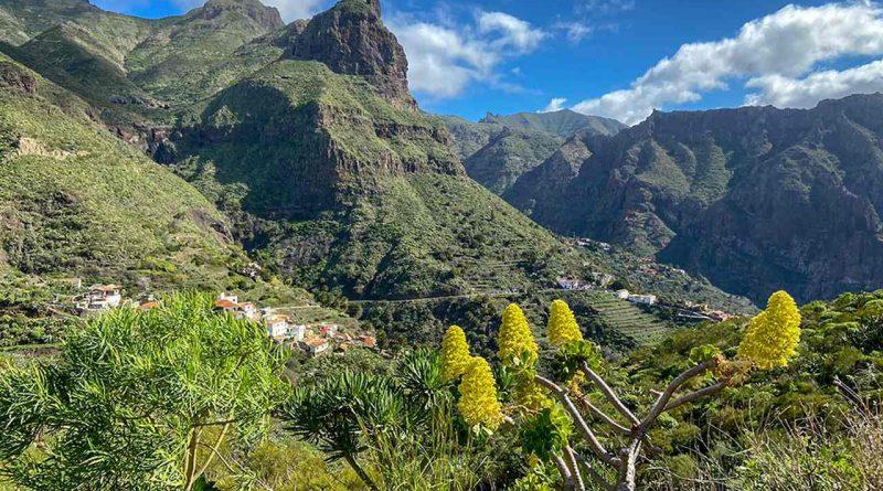 Teneriffa Süden: Aussicht auf das Tenogebirge und Masca