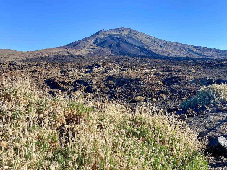 Spanien, Teneriffa_359_Nationalpark Pico del Teide