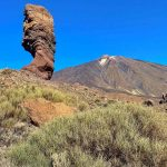 Spanien, Teneriffa_362_Nationalpark Pico del Teide