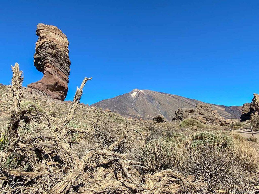 Spanien, Teneriffa_364_Nationalpark Pico del Teide