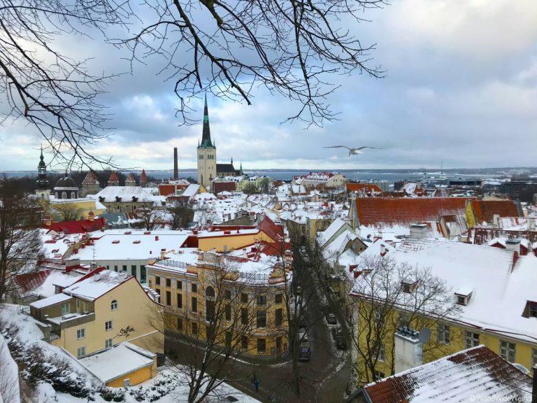 Tallinn 165- Ausblick auf Old City Tallinn