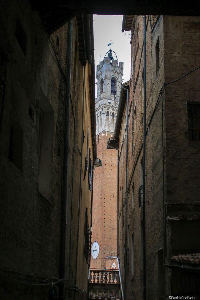 Toskana282- Il Campo, Rathaus Palazzo Pubblico