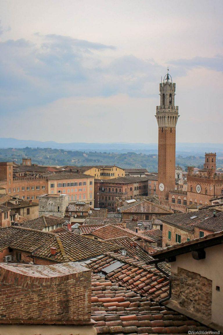 Toskana291- Siena,Dom- Porta del Cielo