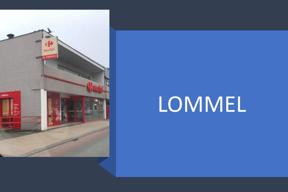 plat dak in Lommel