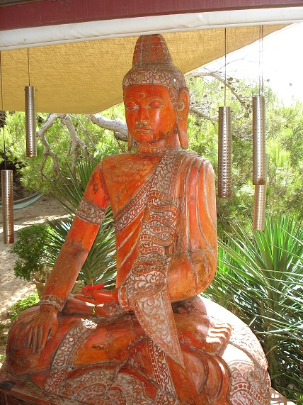 Formacion Instructoras Yoga Nidra Mindfulness y Beneficios Sistema Darshan