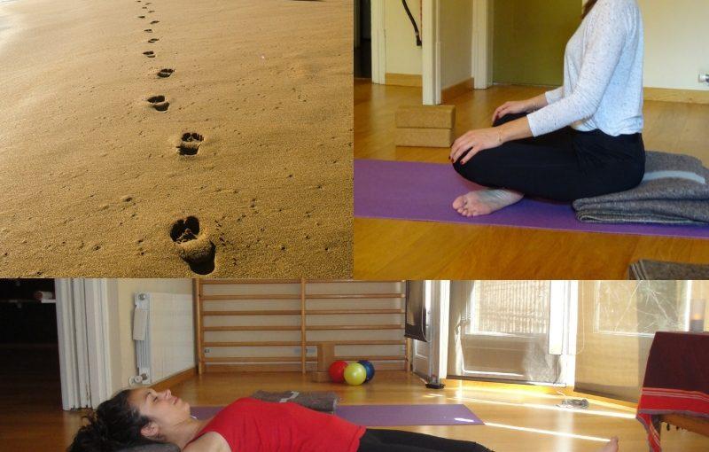 Formacion Instructoras Yoga Nidra Mindfulness Cursos Intensivos Barcelona