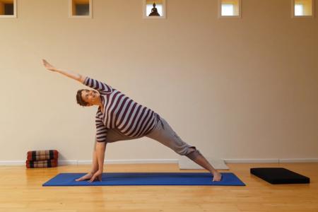 Yogales lang (1 tot 1,5 uur)