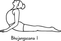 Bhujangasana I 132