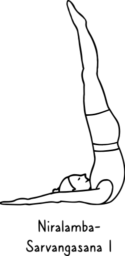 Niralamba-Sarvangasana I 256