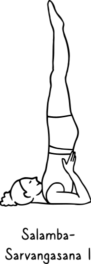 Salamba-Sarvangasana I 264