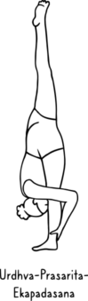 Urdhva-Prasarita-Ekapadasana 339