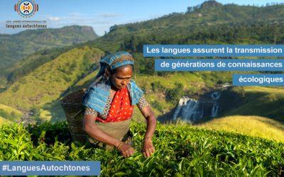 Les langues vivantes : de puissantes garantes de la sagesse écologique ?