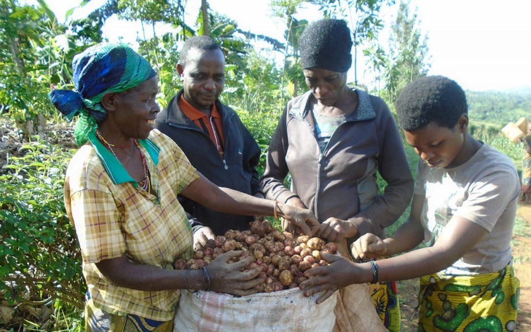 Vers le développement durable – ODD1: Combattre la pauvreté par la protection sociale et le soutien aux familles