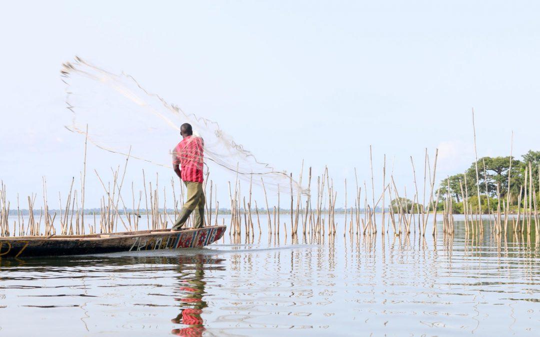 Vers le développement durable – ODD14: une rencontre des savoirs pour préserver les mangroves