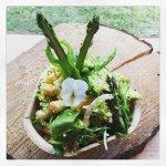 Wildkräuter-Bulgur Salat