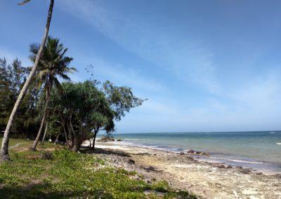 Diani Beach - Beach