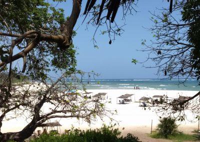 Diani Beach - Kongo River