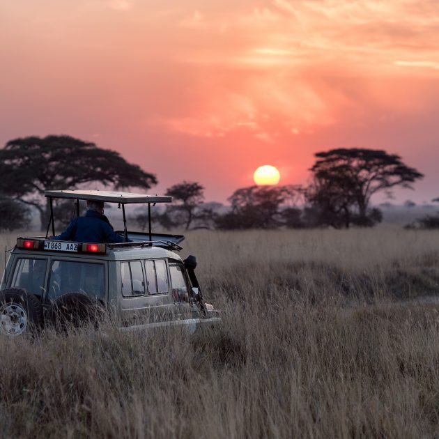 Tanzania Safari Tour Package