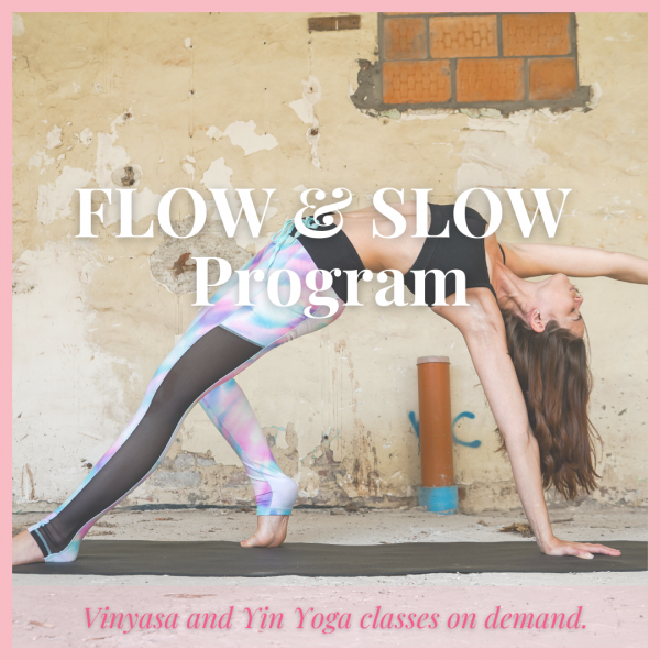 Flow and Slow Program
