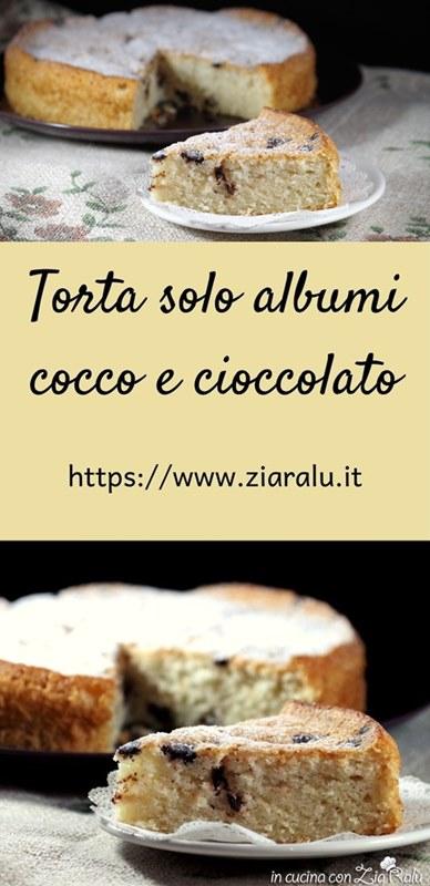 torta solo albumi al cocco con gocce di cioccolato