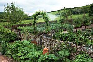Potager – ett blomstrande trädgårdsland
