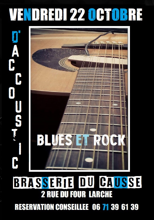 Concert Rock and Blues